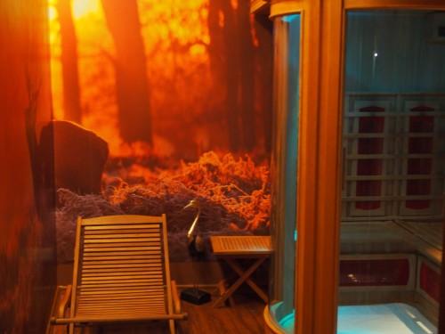 Sauna na podczerwień - Infrasauna - Sauna infrared